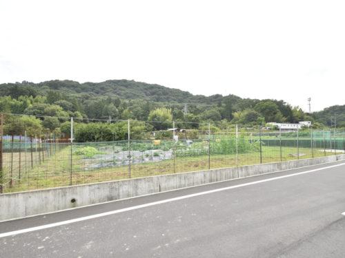 兵庫県たつの市揖保川町 約250坪!広々とした土地物件!